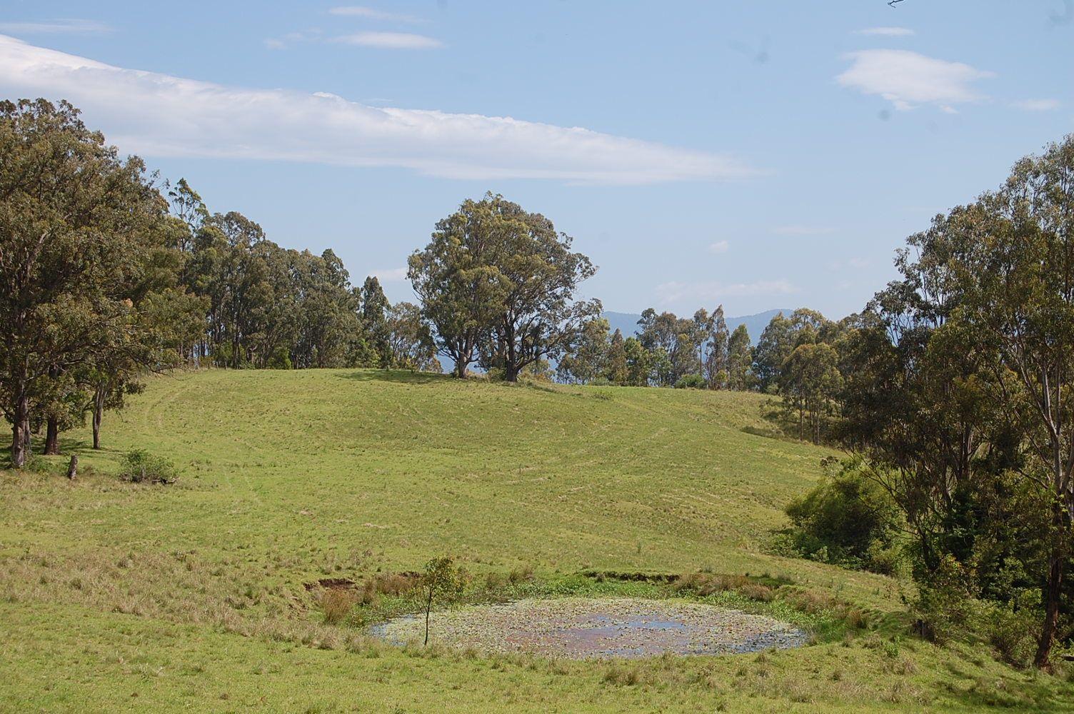 Lot 80 Duck Creek Road, Old Bonalbo NSW 2469, Image 0