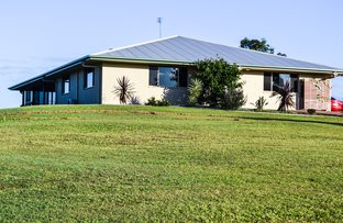 Picture of 46 Wintergreen Way, Peachester QLD 4519