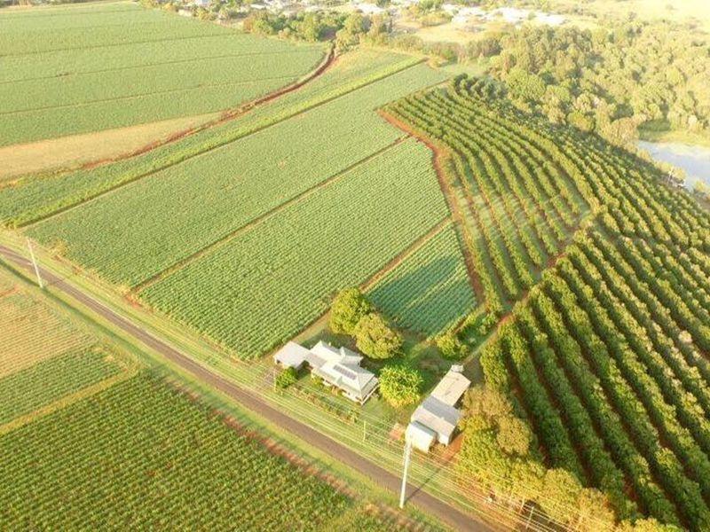 81 Rankin Road, Childers QLD 4660, Image 2