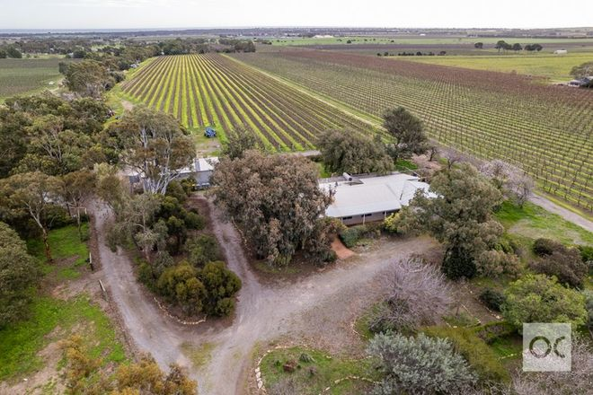 Picture of 196 Ryan Road, SELLICKS HILL SA 5174
