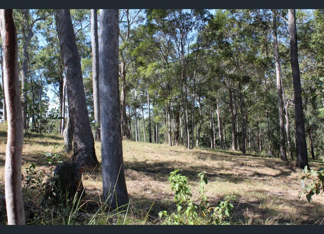 LOT 3 Stottenville Road, Bauple QLD 4650, Image 1