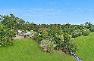 171 Burgum Road, North Maleny QLD 4552