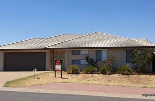 Picture of 6 Blacket Place Hamilton Valley, Lavington NSW 2641