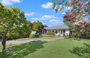 61 Hawkesbury Road, Springwood NSW 2777
