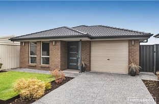 Picture of 164 Kelly Road, Modbury Heights SA 5092