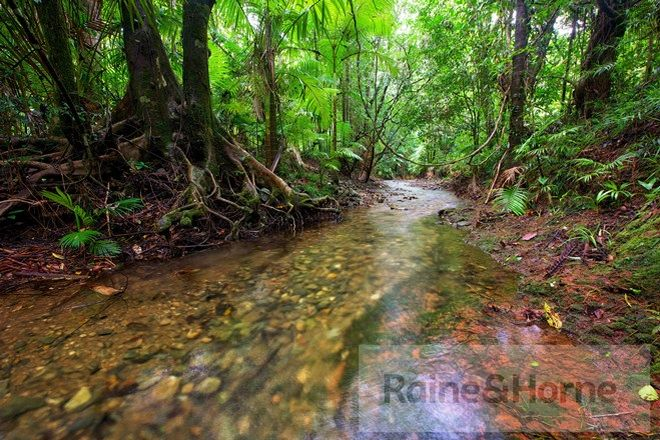 Picture of 22 Ironbark Road (Daintree Peaks Eco Stays), DAINTREE QLD 4873