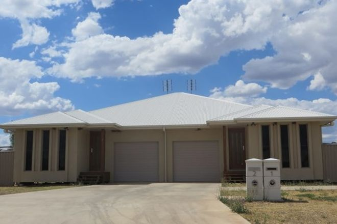 Picture of 18 Bassett Court, ROMA QLD 4455