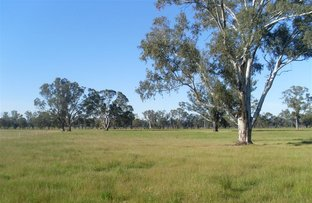 lot 51b Pagets Road, Baddaginnie VIC 3670