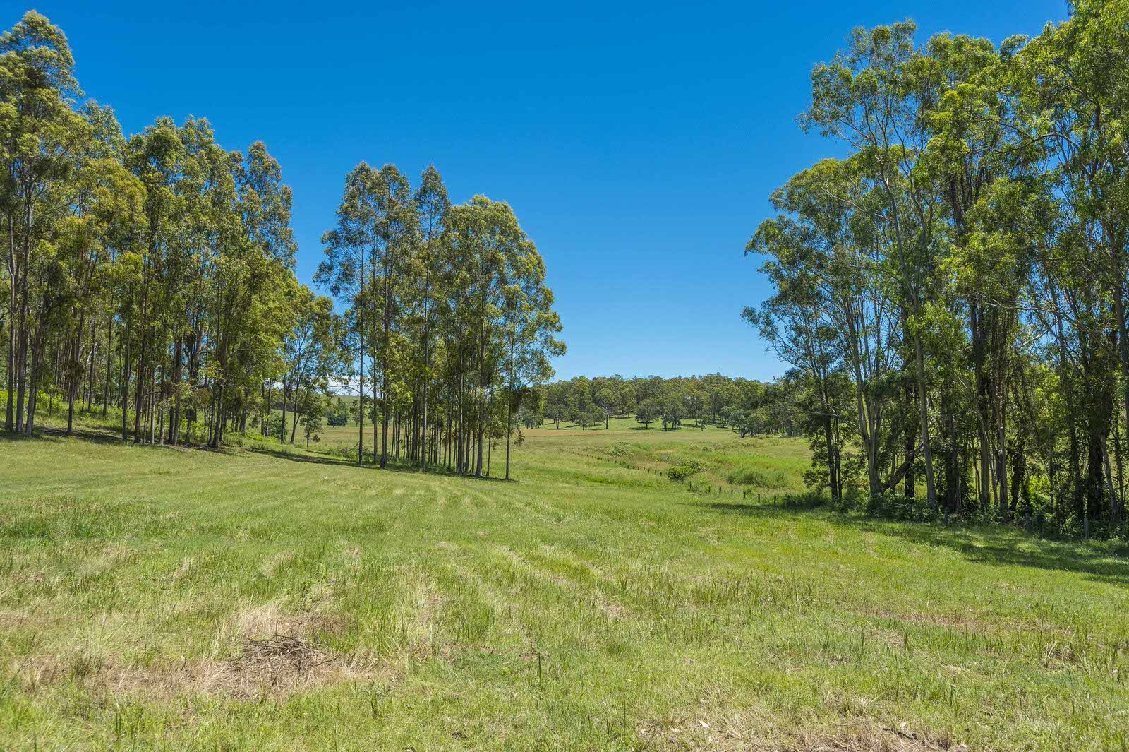Woodview NSW 2470, Image 1