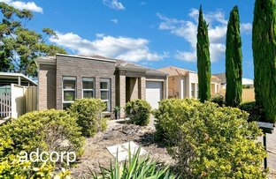 Picture of 7 Abelia Avenue, Flinders Park SA 5025