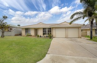 Picture of 3 Mildwaters Place, Mount Tarcoola WA 6530
