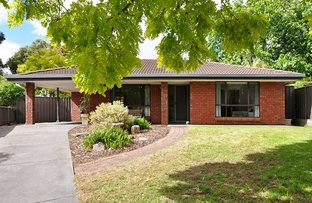 Picture of 12 Knightsbridge Court, Happy Valley SA 5159