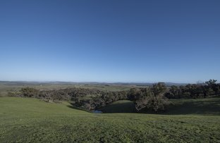 Picture of Lot 2, 285 Gehreys Lane, Forbes VIC 3764