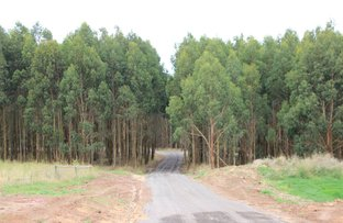 Picture of 5 x Forestry properties, Ballarat Central VIC 3350