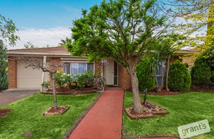 Picture of 7 Peveril Court, Narre Warren VIC 3805