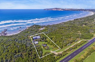 Picture of 1363 BRIDGWATER ROAD, Cape Bridgewater VIC 3305