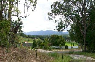 51 old Brierfield  road, Bellingen NSW 2454