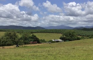 Picture of Lot 9 Innisfail Japoon Road, Camp Creek QLD 4871