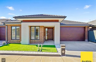 Picture of 13 Saxby Street, Tarneit VIC 3029