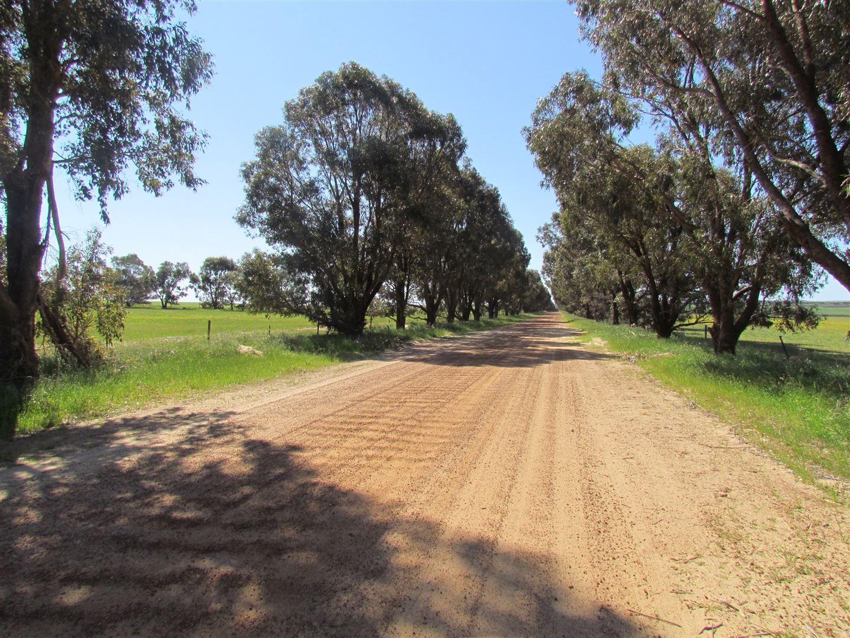 469 Hickety Road, Howatharra WA 6532, Image 0