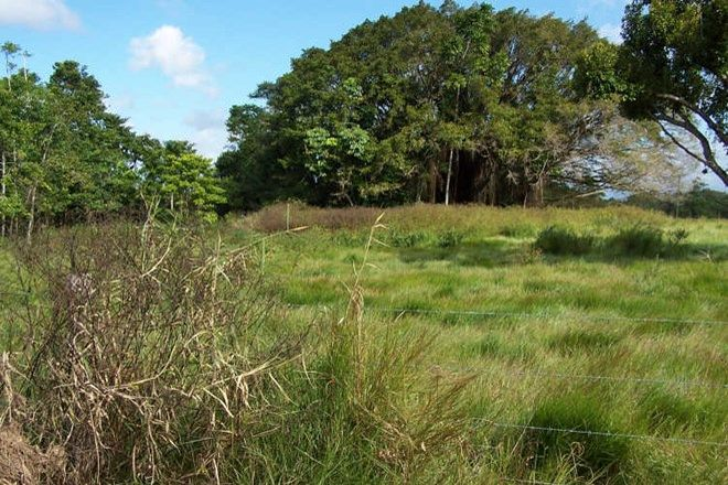 Picture of Lot 8 Tully Gorge Road, TULLY QLD 4854