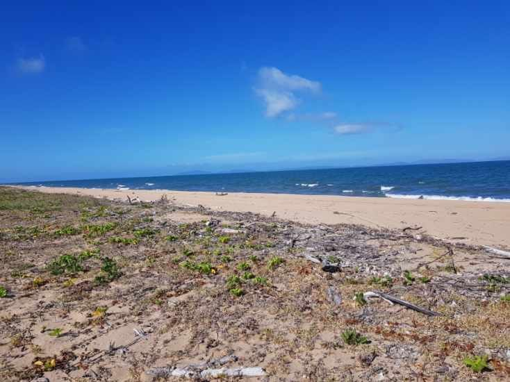 0 Poppis Road, Forrest Beach QLD 4850, Image 0