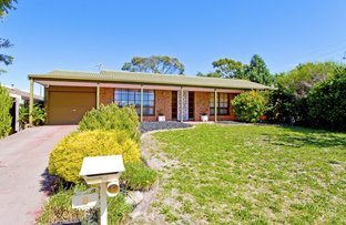 Picture of 8 Abiona Street, Flagstaff Hill SA 5159