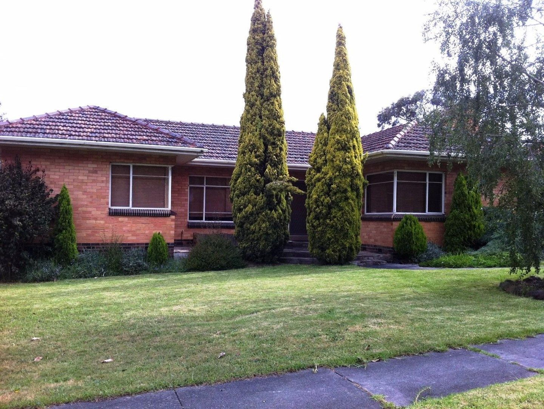 6 Campbell Street, Glen Waverley VIC 3150, Image 0