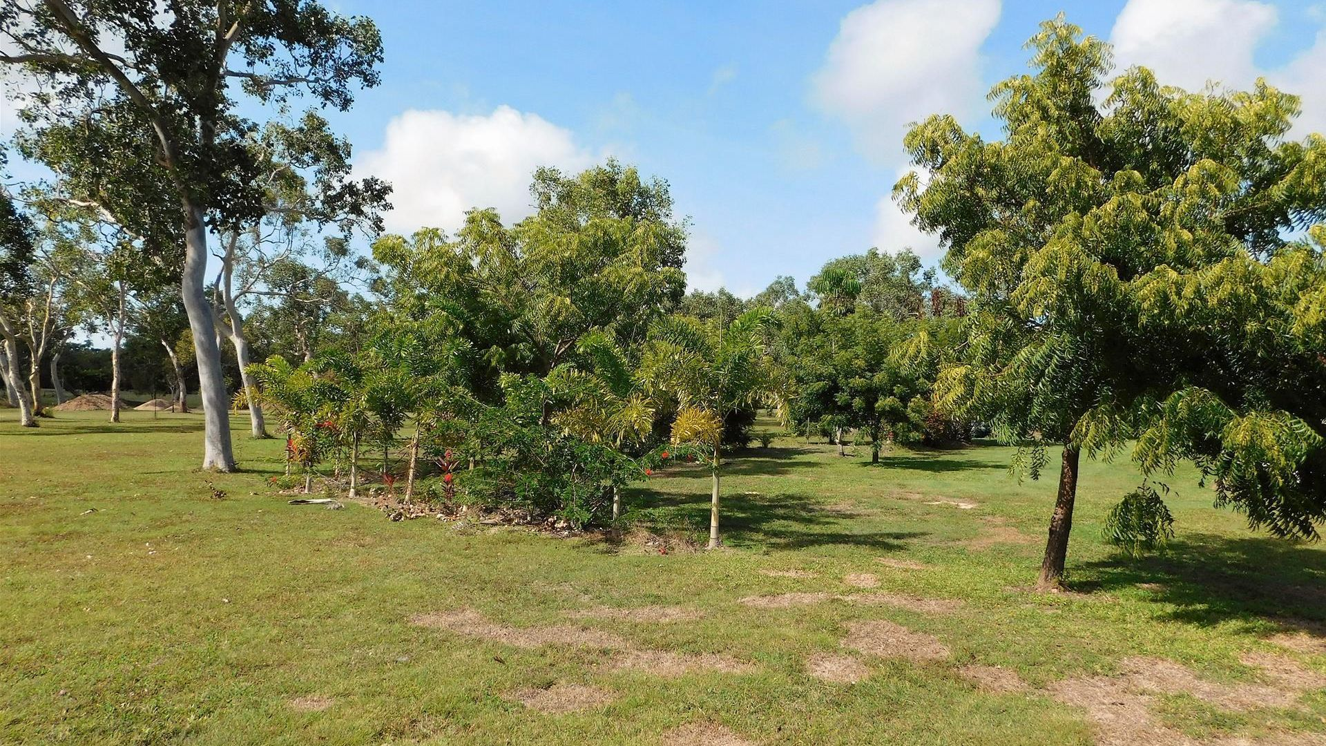779 Greenhill Road, Ilbilbie QLD 4738, Image 2