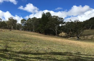 Picture of Walcha Road NSW 2354