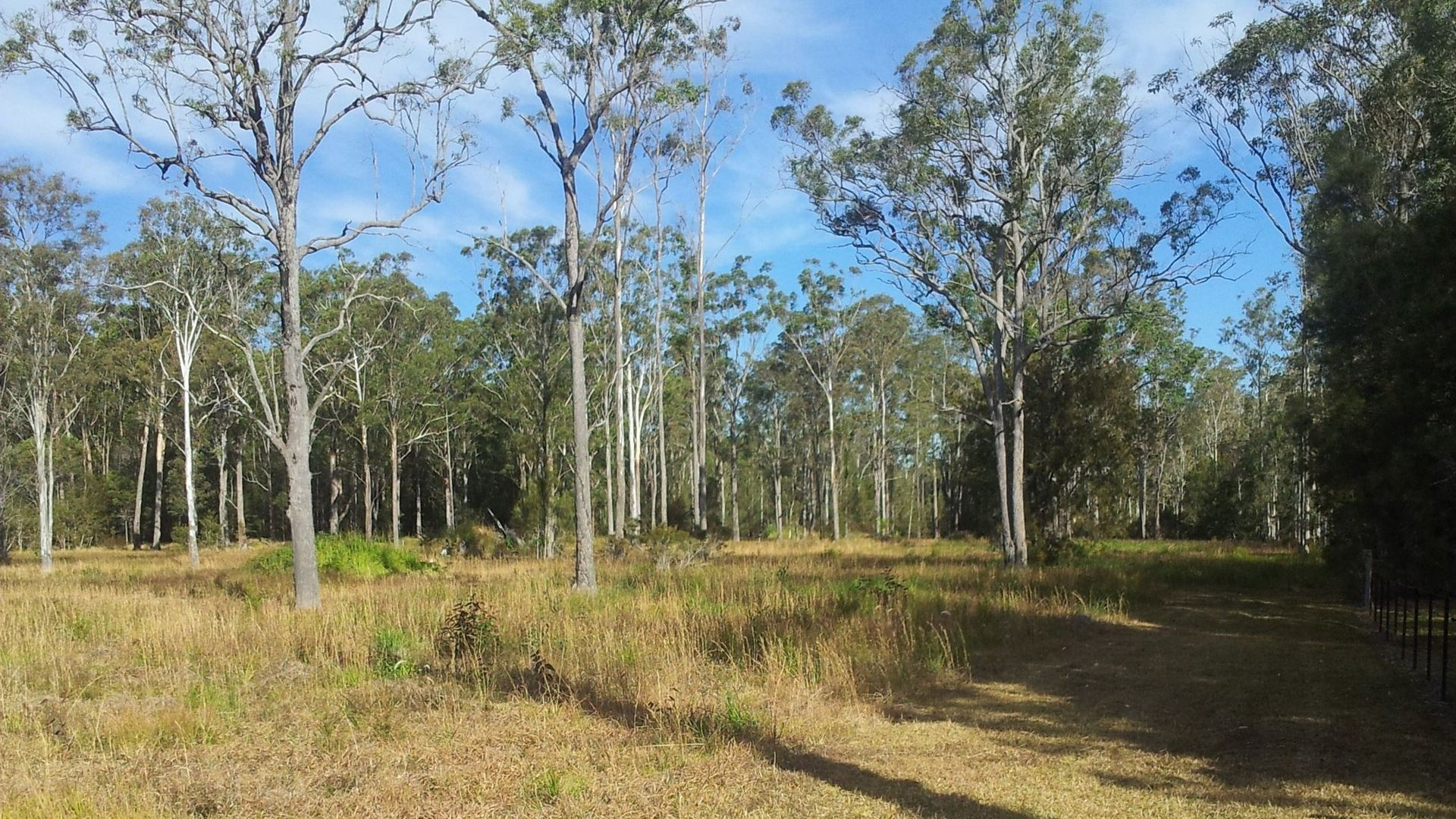Lot 33 OLD STATION ROAD, Verges Creek NSW 2440, Image 1