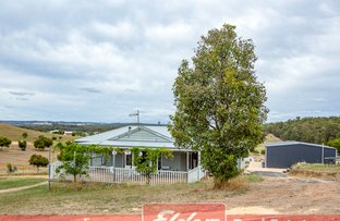 Picture of 33 SCAFFIDI PLACE, Donnybrook WA 6239