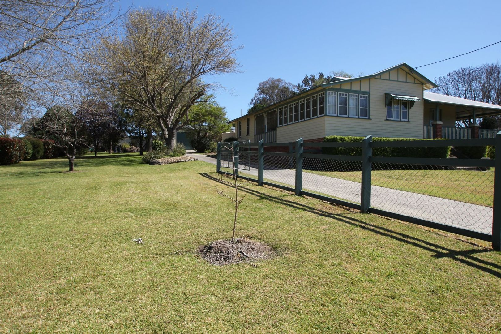 50 George Street, Tenterfield NSW 2372, Image 1