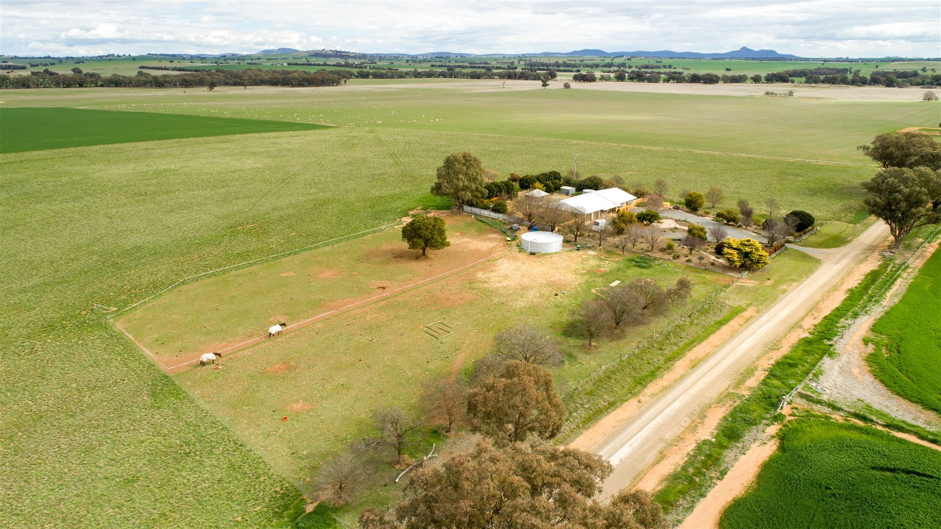 Currawalls Thirteen Mile Reserve Rd, Maxwell via, Wagga Wagga NSW 2650, Image 1