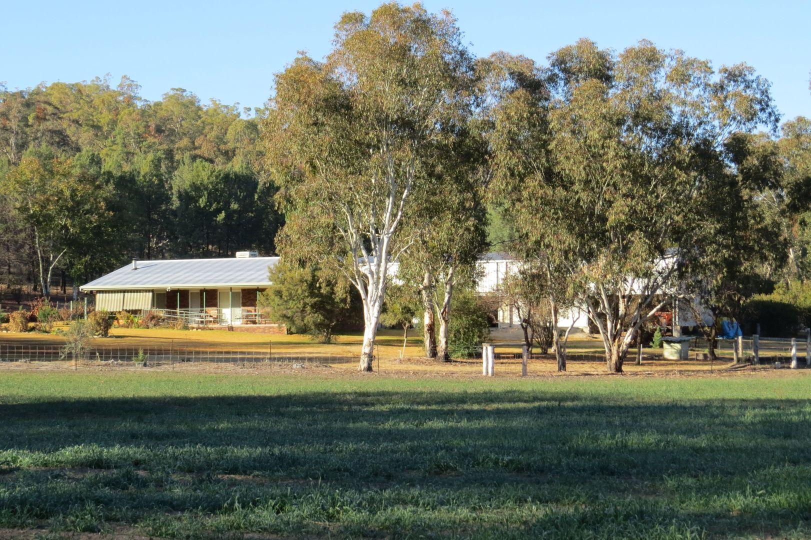 12921 Gwydir hwy, Warialda NSW 2402, Image 0