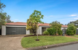 Picture of 18 Gentian Drive, Arundel QLD 4214