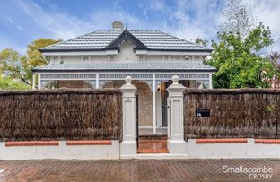 14 Gray Street, Norwood SA 5067