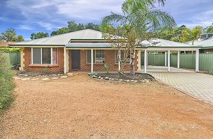 Picture of 31 Skua Grove, Seville Grove WA 6112