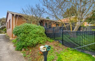 Picture of 1/824 Chisholm Street, Black Hill VIC 3350