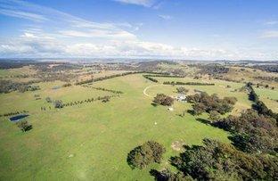 """Collydale/1872 Shannon Vale Road, via, Glen Innes NSW 2370"