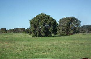 Picture of Lot 504 Collingwood Road, Collingwood Park WA 6330