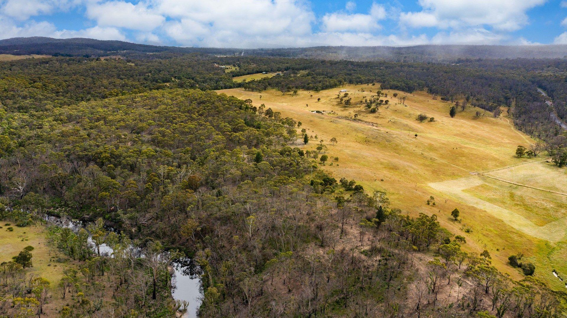 7164 Nerriga Road, Oallen NSW 2580, Image 2