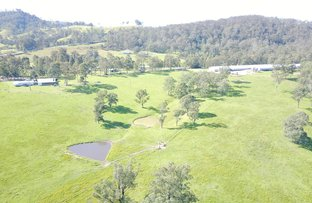 Picture of 972 Dungog Road, Dungog NSW 2420