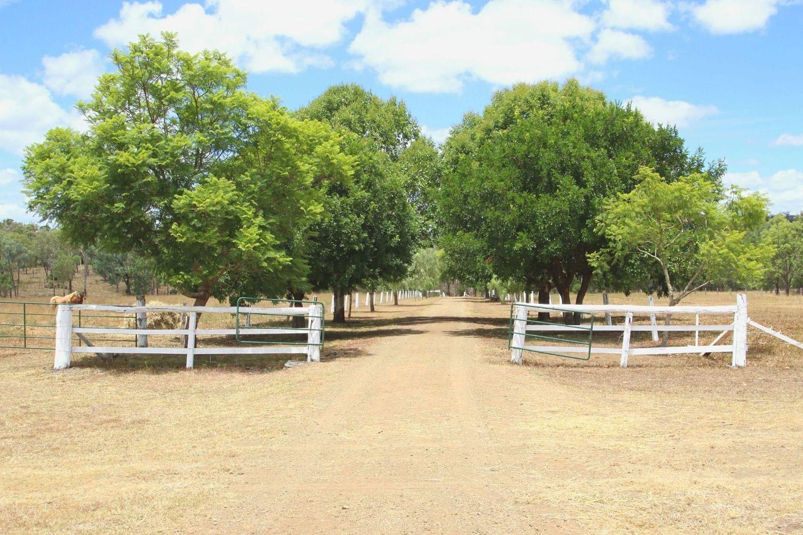 363 Bazleys Road, Monto QLD 4630, Image 2