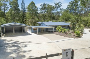 Picture of 36 Grey Gum Crescent, Yarravel NSW 2440