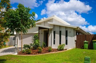 Picture of 12 Lapwing  Circuit, Beerwah QLD 4519