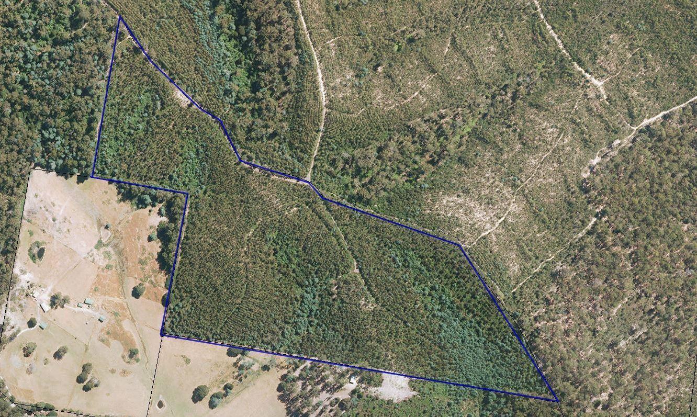 Lot 1 Den Road, Pipers River TAS 7252, Image 0
