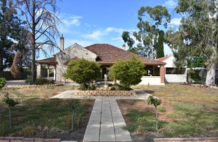 Picture of 167 Eighteenth Street, Renmark SA 5341