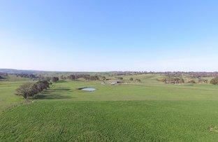 Picture of Lot 2/2251 Gurrundah , Goulburn NSW 2580