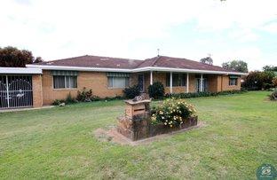 Picture of 50 Queen Street, Warialda NSW 2402
